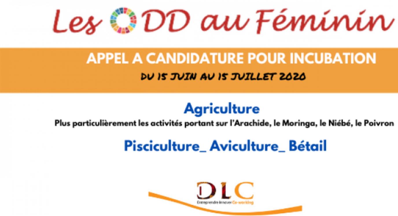 Appel à candidature 2020 ODD au féminin