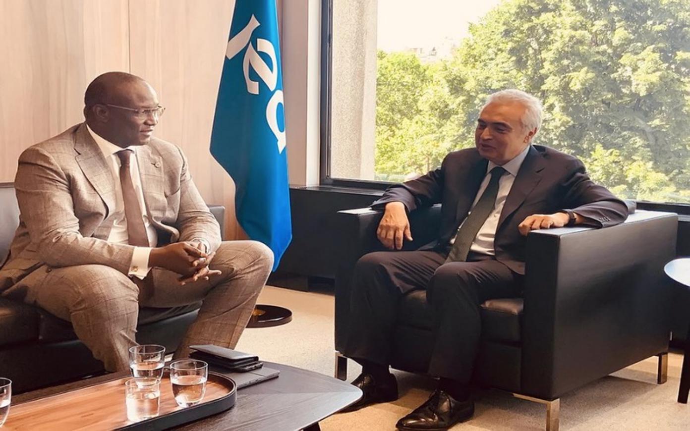 Mouhamadou Makhtar Cissé & Fatih Birol – Trouver l'énergie d'engager la reprise en Afrique, après la pandémie et la récession