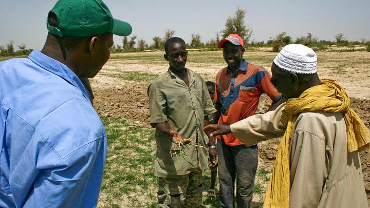 L'AFDI s'engage en faveur des agriculteurs maliens de la région de Ségou.