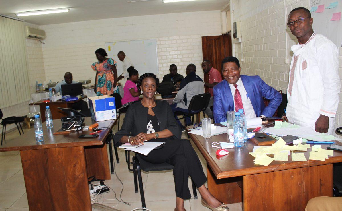 Vers un nouveau visage de la pharmacopée traditionnelle en Afrique centrale