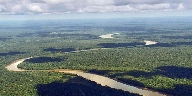 L'Afrique prend en main la sauvegarde de sa biodiversité